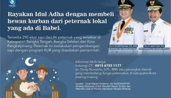 Mari Sambut Idul Adha dengan Membeli Hewan Kurban dari Peternak Lokal