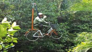 Menikmati Sensasi Hutan Mangrove Di Kurau Barat