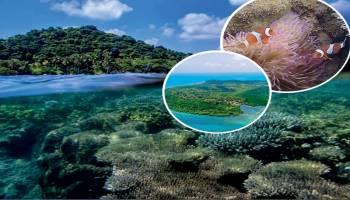 Menjelajahi Eksotisme Pulau Kelapan