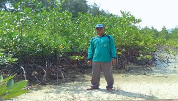 Merintis Keindahan Alam Pantai Mang Kalok