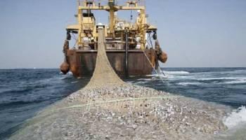 Merusak Ekosistem Laut, Pemprov Babel Optimalkan Patroli Gabungan Tindak Trawl