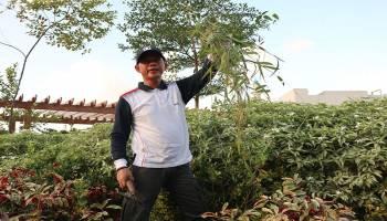 Mulkan Ajak PNS Kerja Bhakti dalam 'Jumat Bersih'