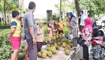 Musim Durian Tiba, Pedagang Raup Keuntungan