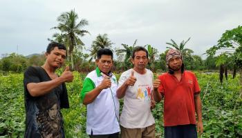 Nasib Pilu H. Wel, Petani Cabai di Tengah Pandemi Covid-19
