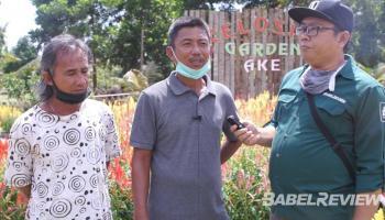 Panjuri Cs Sulap Lahan Cabe Jadi Taman Bunga yang Instragramable, Berasa di Eropa Cuy..