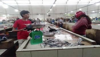 Pasokan Berkurang, Harga Ikan Melejit