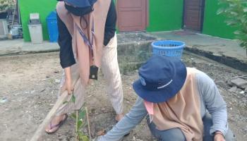 Peduli Lingkungan, Mahasiswa KKN UBB Tuatunu Indah Tanam Pohon di Kantor Kelurahan dan Balai Adat