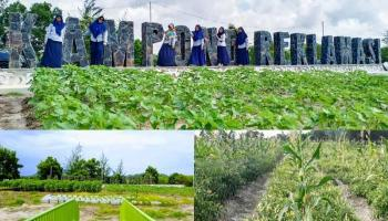 Pemda Apresiasi PT Timah Kembangkan Agrowisata Kampong Reklamasi Selinsing
