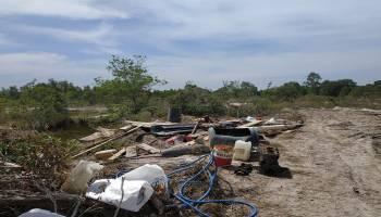 Penambang Hantam Hutan Lindung Kuruk, Tim Gabungan Polda Babel Turun Tangan
