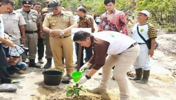Pendiri Yayasan Bangka Alam Lestari Ajak Masyarakat Menanam Pohon