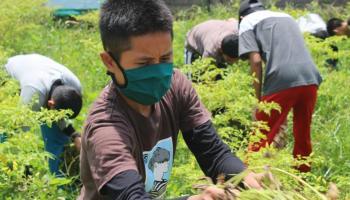 Penerima Beasiswa Pendidikan PT Timah Dibekali Soft Skill di Tengah Pandemi