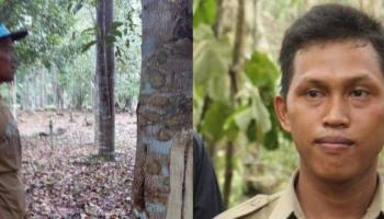 Pengurus Kebun Gaharu Yang Diberhentikan Ini Disebut Bukan Honorer, Roni: Semoga Cepat Berakhir