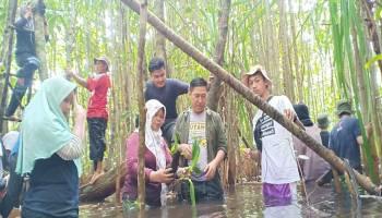 Peringati Hari Lingkungan Hidup Sedunia, Puluhan Penggiat Lingkungan Tanam Anggrek di Sungai Upang