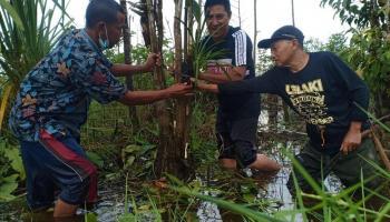 Peringati HLH Sedunia, BFS Bersama PAI dan Sahabat Alam Tanam Anggrek di Sungai Upang