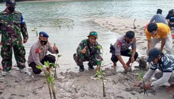 Pertahankan Kawasan Pesisir, Laskar Pesisir Tanam Seribu Mangrove