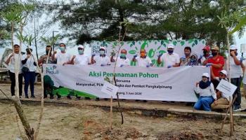 PLN UP3 Bangka bersama Wali Kota Pangkalpinang Tanam Tabebuya dan Anggrek di Pasir Padi