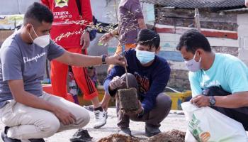 PT Timah bersama Masyarakat Tanam Puluhan Pohon di Kampung Nelayan Sungailiat