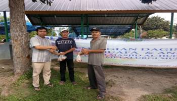 PT. Timah Salurkan Bantuan Daging Sapi untuk Warga Kurang Mampu