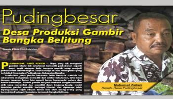 Puding Besar Desa Produksi Gambir Bangka Belitung
