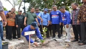 Rehabilitasi Bekas Tambang Belitung, Gubernur Launching Gerakan Tanam Mangrove dan Jambu Mete