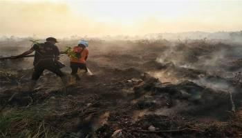 Sengaja Dibakar Pemilik, 20 Hektar Lahan Gambut Ludes, BPBD Babel Kesulitan Padamkan Api
