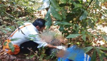 Sesosok Mayat Ditemukan di Belakang Gudang Peltim Muntok