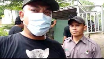 Setelah 2 Tahun Lebih Dirawat, Alobi Lepaskan 3 Siamang ke Hutan Lahat Sumsel