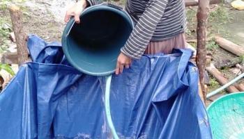 Solusi Financial di Era New Normal, Mahasiswi UNDIP Ini Mengusungkan Program Aquaponik Pekarangan Rumah