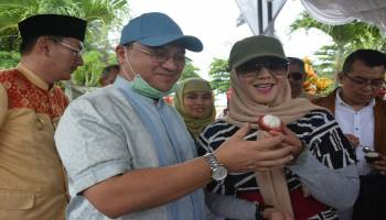 Tebak-Tebak Buah Manggis,Gubernur Berharap Manggis Belitung Go Internasional