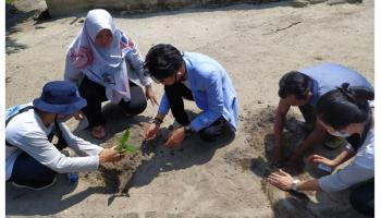 Tim KKN Desa Batu Beriga Tanam 1.000 Pohon