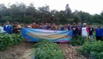 Tim PKM Tingkat Jurusan UBB Gelar Implementasi Prinsip 6 T Pestisida Pertanian
