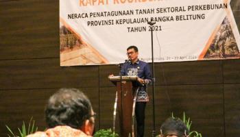 Tingkatkan Produksi dan Produktivitas Perkebunan, Babel Susun Neraca Penatagunaan Tanah