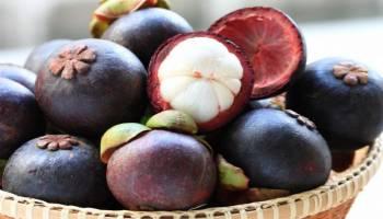 Tips Kesehatan: 18 Cara Mengobati Ambeien Secara Alami dan Cepat