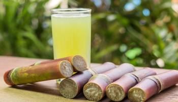 Tips Kesehatan: 8 Manfaat Air Tebu untuk Kesehatan, Apa Saja Manfaatnya?