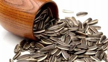 Tips Kesehatan: Ini Kandungan Nutrisi Kuaci, Seberapa Sehat Sebenarnya?
