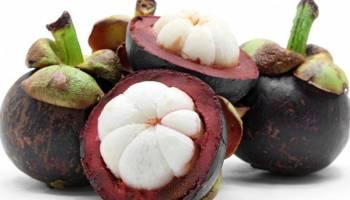 Tips Kesehatan: Kandungan Manggis dan Manfaatnya untuk Kesehatan