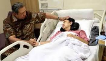 Tips Kesehatan: Mengenal Kanker Darah yang Diidap Ani Yudhoyono, Ini Gejalanya