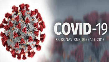 Update Covid-19 : Babel dan 7 Provinsi Lain Nihil Kasus Baru Corona