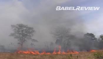 VIDEO Puluhan Hektar Lahan Terbakar Nyaris Melalap Pemukiman Warga