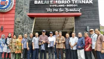 Wakil Bupati Bangka Kunjungan Kerja ke Balai Ternak Embrio Sapi Cipelang Bogor