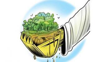Warga Guntung Sebut Ada Dugaan Alih Fungsi Tanah, Kades Menyangkal, Kejari Segera Kroscek