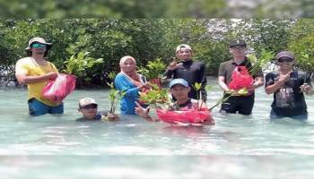 Yasir Kelola Hutan Mangrove Menjadi Ekowisata