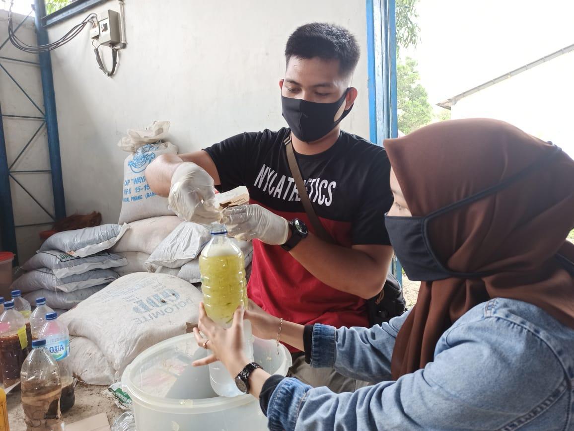 Sukses Mengolah Sampah Pasar, Mahasiswa KKN UBB Batin Tikal Produksi Zat Perangsang