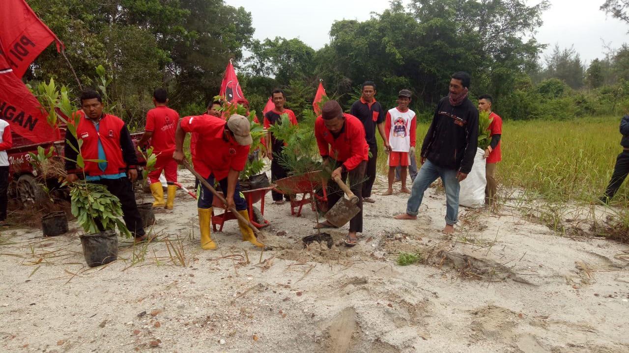 Teladani Jejak Bung Karno, Ketua DPRD Bangka Tanam Ratusan Pohon