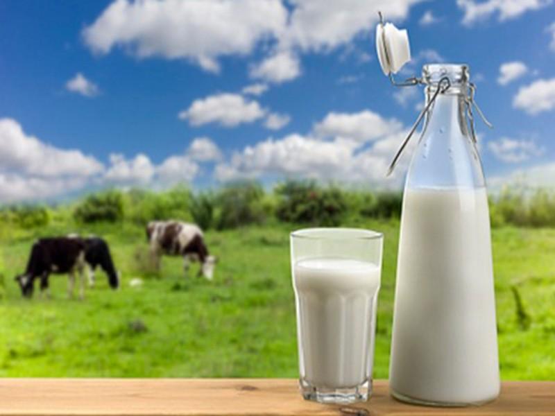 Tips Kesehatan: Susu Campur Merica dan Cengkeh, Ternyata Punya 7 Khasiat Ini