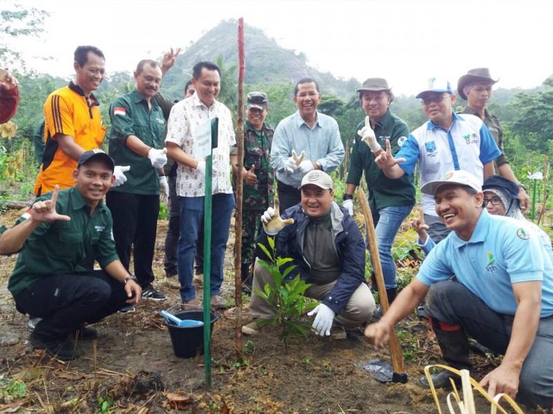 Upaya Atasi Banjir, Gubernur Tanami 12 Ribu Pohon di Gunung Mangkol