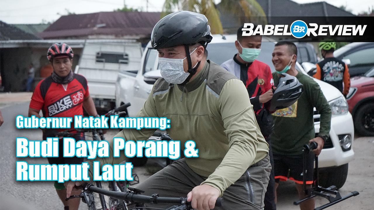 VIDEO: Gubernur Erzaldi Natak Kampung, Budi Daya Porang dan Rumput Laut